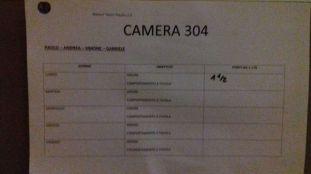camera 304