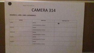 camera 314
