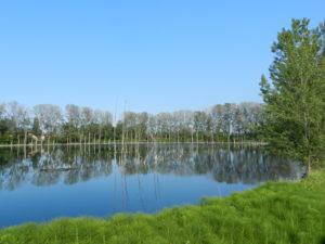 Lago dei Gelsi Cotignola