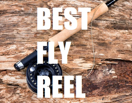 BEST FLY REEL FOR THE MONEY