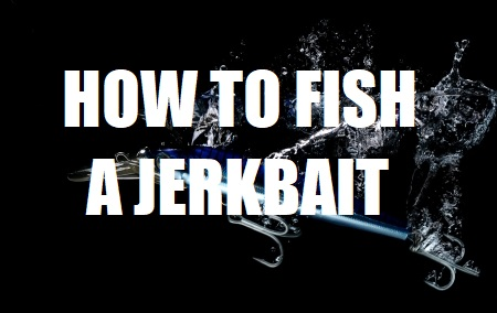 how to fish a jerkbait