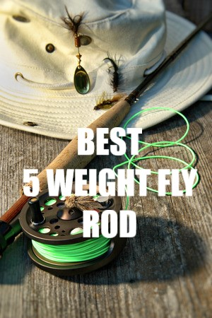 BEST 5 WEIGHT FLY ROD