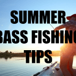 How To Catch Largemouth Bass In Summer – Where, When, How