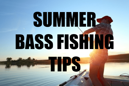 how to catch largemouth bass in summer