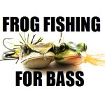 Frog Fishing For Bass – Your One Hop Stop