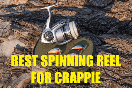 BEST SPINNING REEL FOR CRAPPIE