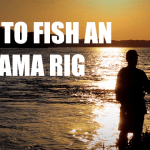 How To Fish An Alabama Rig – Everything You Need To Know