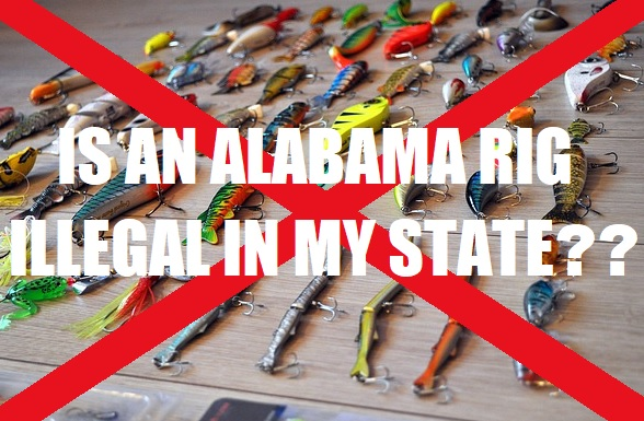is an alabama rig legal in my state?