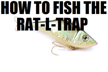 HOW TO FISH A RATTLE TRAP