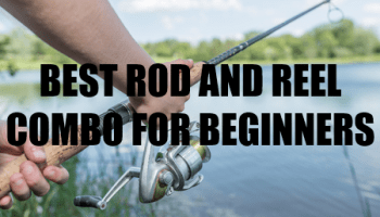 Choosing The Best Crankbait Reel - My Top 3 Choices