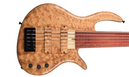 Gold Standard Steve Lawson Custom Fretless, Bolt-on neck Bass Guitar