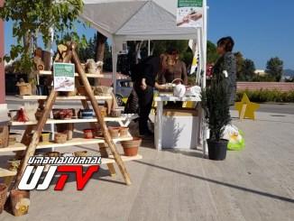 Giornata nazionale dell'albero venti piante a dimora alla scuola musica di Costano