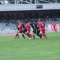 Calcio, serie D, Domenica il Bastia giocherà al Brilli Peri di Montevarchi