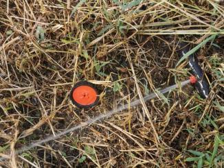 BasTiAmo, guasti all'impianto irrigazione, forse taglio meccanizzato