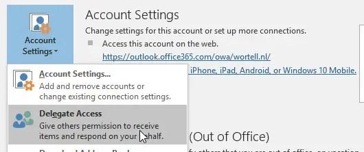 Skype delegate in Outlook