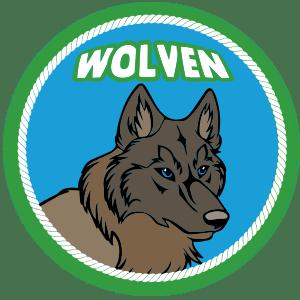 Overzicht – Scoutinggroep