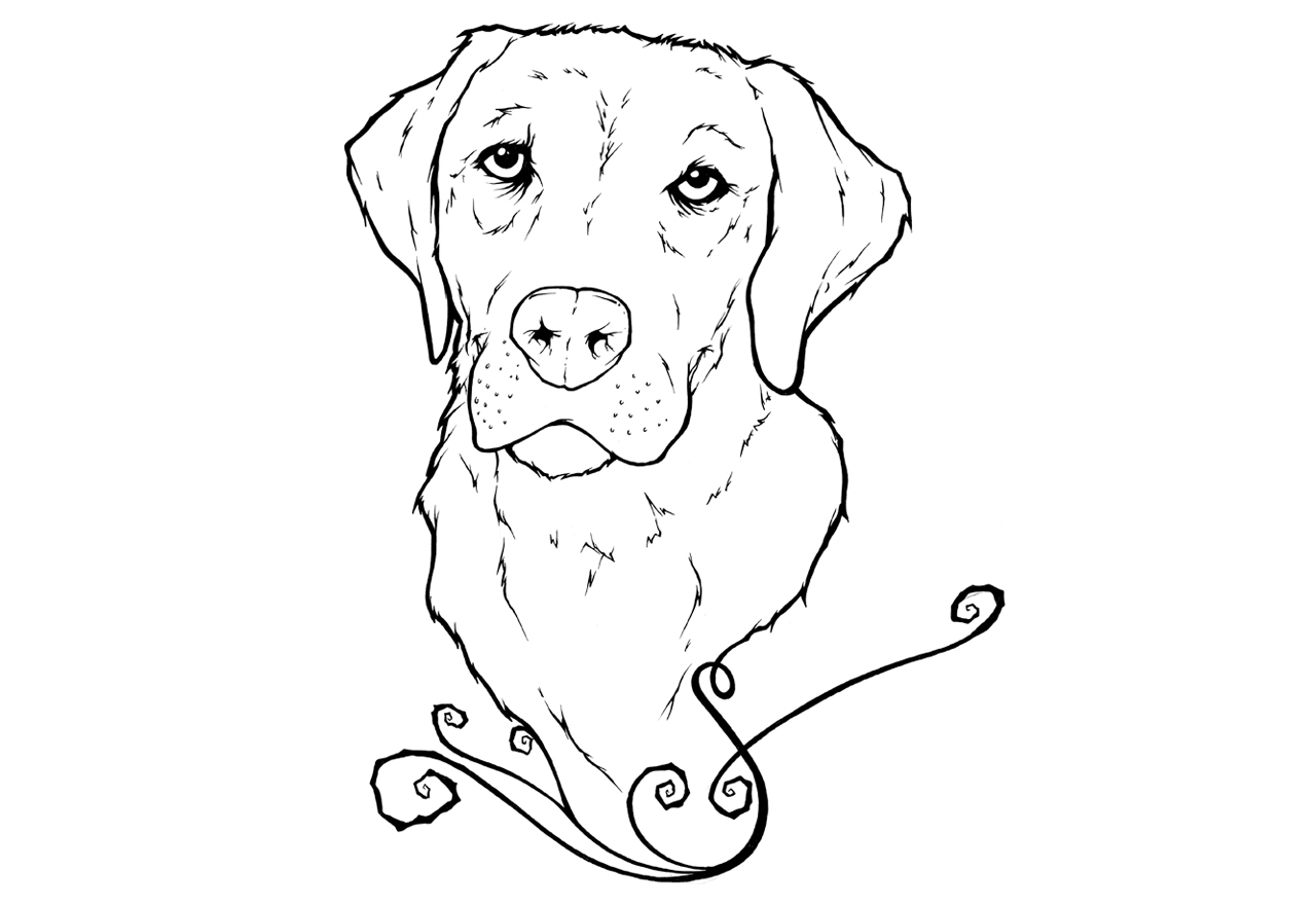 yellow lab coloring pages picture