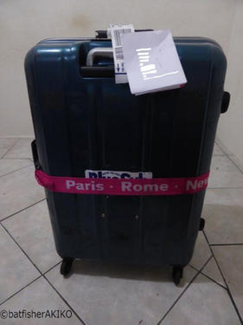 無事デリバリーされたスーツケース