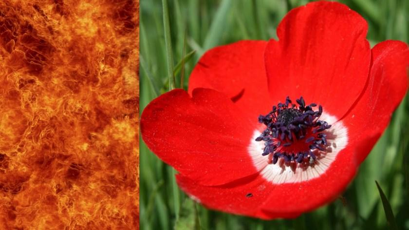 שער מטפיזי בין עולם החומר והרוח - אש