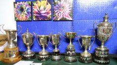 Pineapple Trophies