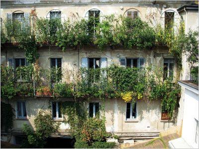 Nature verticale à Milan / Italie
