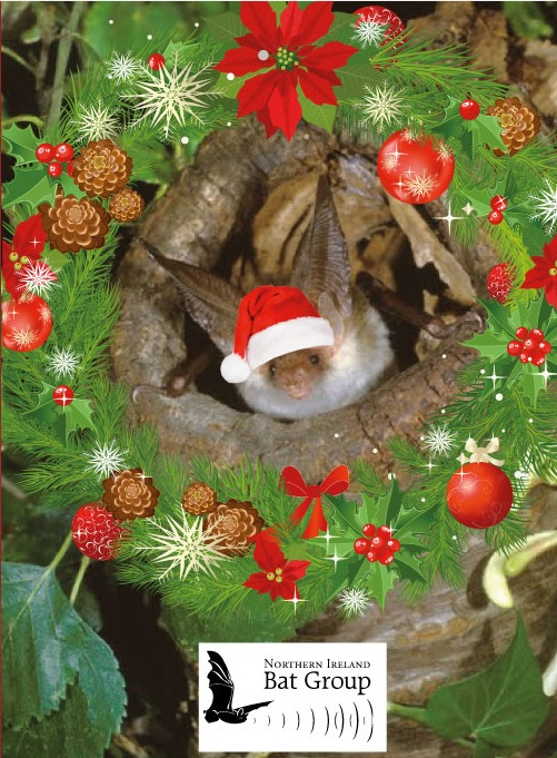 Merry Christmas Northern Ireland Bat Group