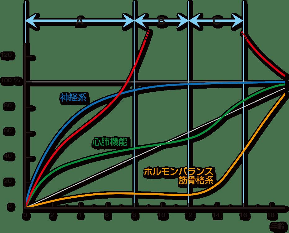スキャモンの成長曲線