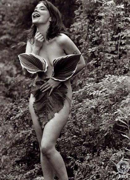 Björk die Waldfee