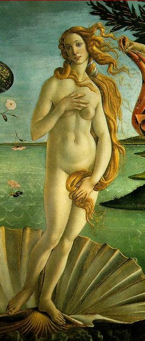 "The image ""https://i2.wp.com/www.bau.pt/weblog/botticelli-venus-768.jpg"" cannot be displayed, because it contains errors."