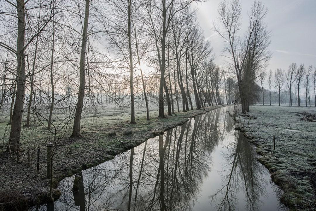 REFLETS DE PEUPLIERS SUR LE CANAL DU CHAIL - LE VANNEAU