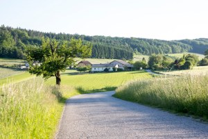 Bauernhof Gruber