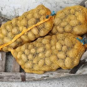 Kartoffeln, ab Hof, Foto: Bauernhof der Familie Post