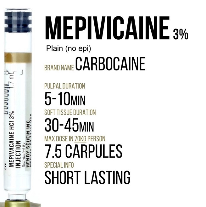Mepivicaine plain information