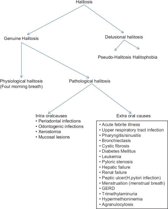 Halitosis diagnosis flowchart