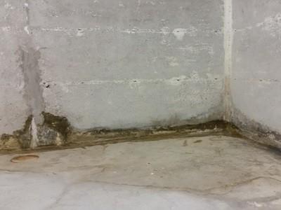 undichter-keller-nasser-wand-sanieren-kosten Beratung Tipps Baumangel nasse Keller