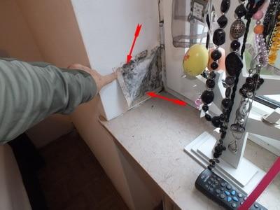 Baumangel bei Hauserwerb Schimmelpilz in Wohnung & Feuchte, Baumangel bei Hauskauf Schimmelpilz im Haus Schimmel alle Zimmer