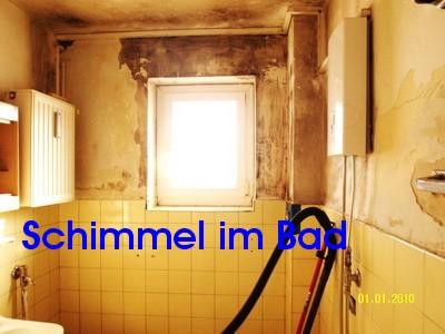Schimmel bzw. Schimmelpilze im Bad, Schwarzschimmel an Bad Wand, Decke, Fugen Silikon schädlich