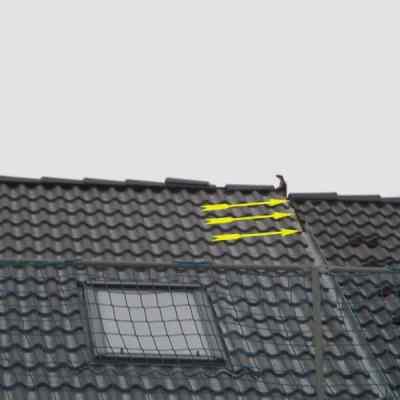 Bauberatung Kontrolle Dach