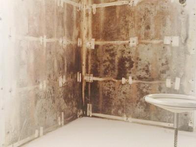 verschimmelte Wand hinter Bekleidung, Schimmelpilz