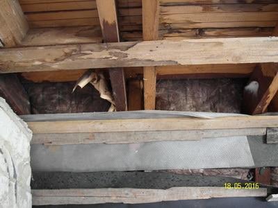Schimmel an Dachbalken, Baumängel