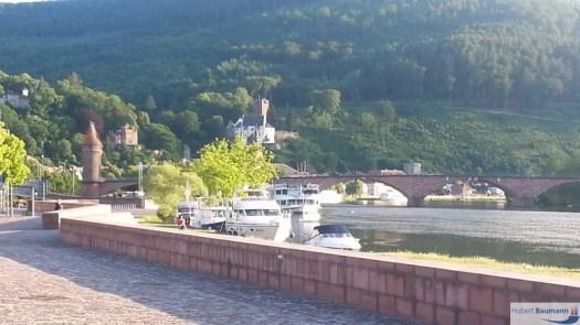 Miltenberg-Mainufer