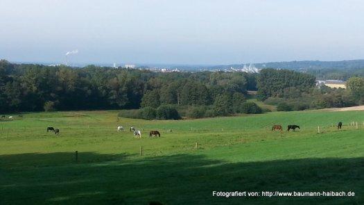 An der Schellenmuehle - Blick nach Aschaffenburg