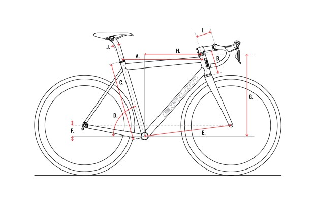 Baum-Cycles,-Geo-Chart