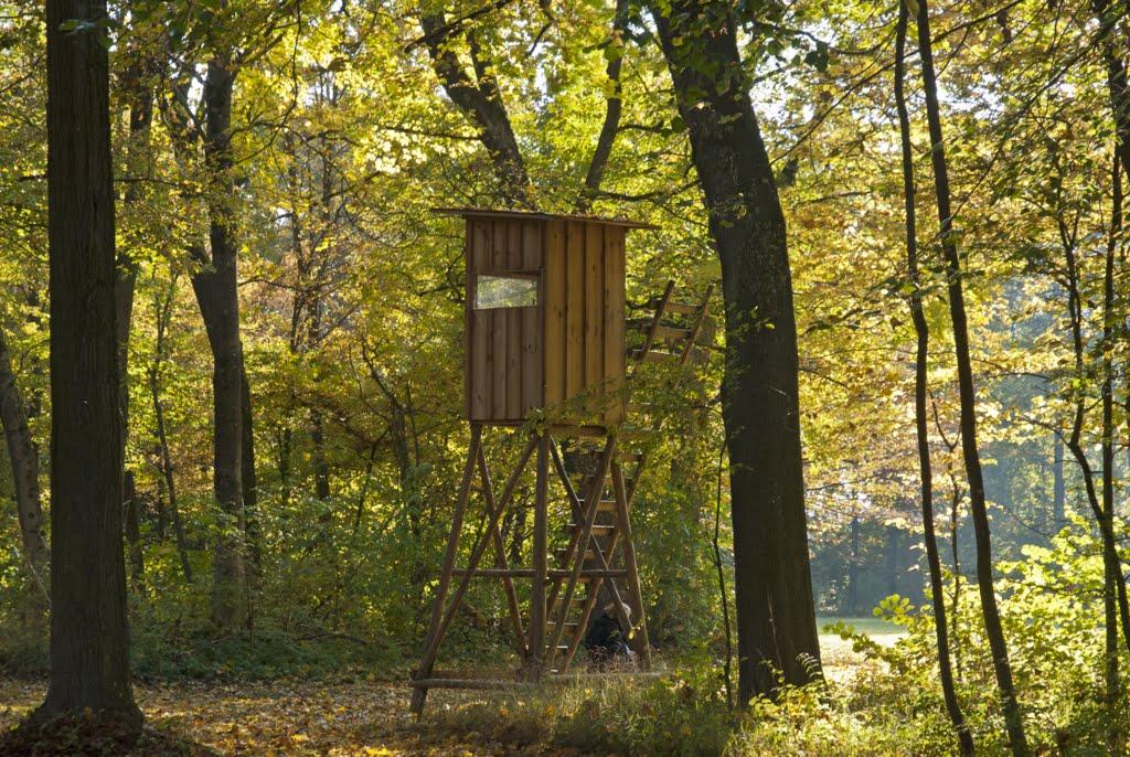 Herbstspaziergang im Schloßpark Oberschleißheim, (23. Oktober 2011 143 Uhr)