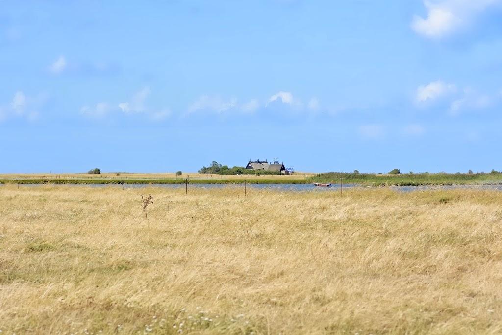 langenwerder vogelschutzinsel