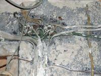Alte Kabel und Verteilung Unterputz