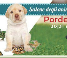 My Fantastic Pets arriva a Pordenone
