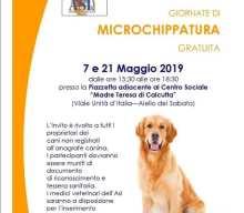 Aiello del Sabato, microchip gratis il 7 e 21 maggio