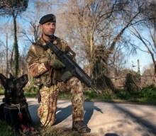 I CANI MILITARI in pensione andranno ai soldati CONDUTTORI