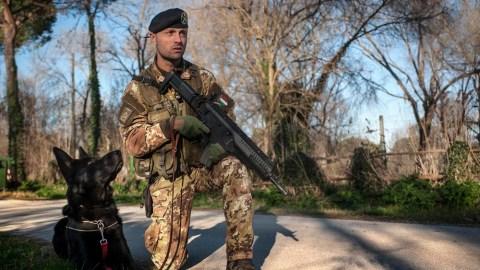 cani militari in pensione